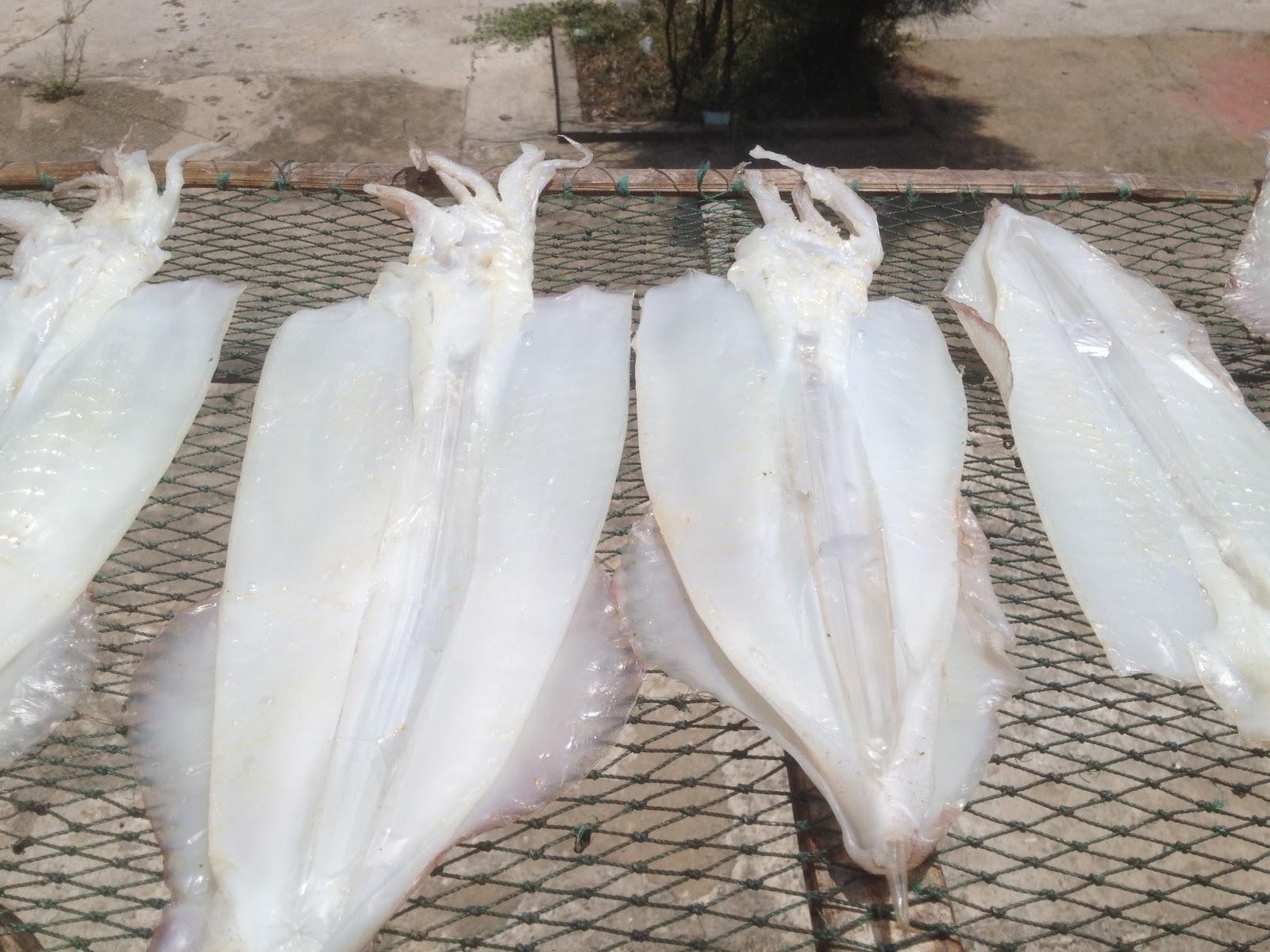 Phân biệt các loại mực một nắng để làm được món ăn ngon